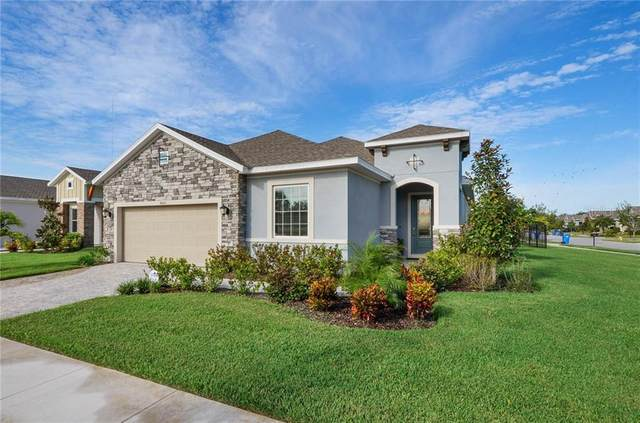 6001 Burrowing Owl Place, Lithia, FL 33547 (MLS #T3267012) :: The Duncan Duo Team