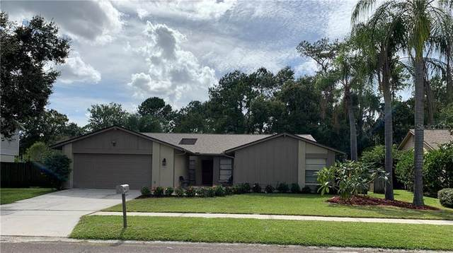 Address Not Published, Valrico, FL 33596 (MLS #T3267019) :: Alpha Equity Team