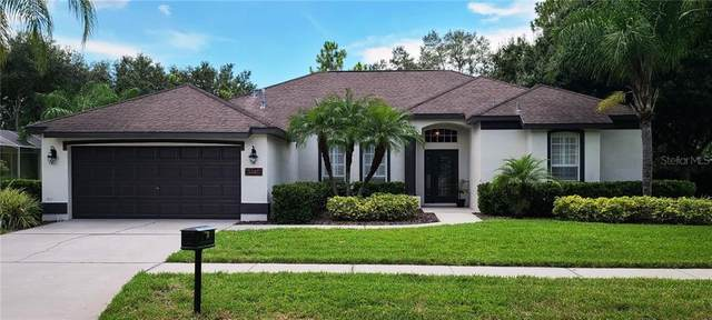 5721 Tanagerside Road, Lithia, FL 33547 (MLS #T3267023) :: Premier Home Experts