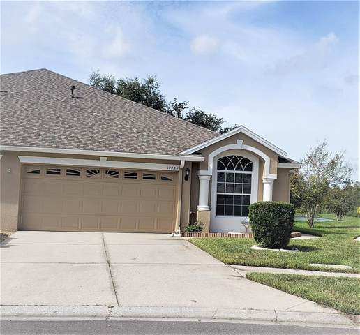 19234 Weymouth Drive, Land O Lakes, FL 34638 (MLS #T3267060) :: Rabell Realty Group