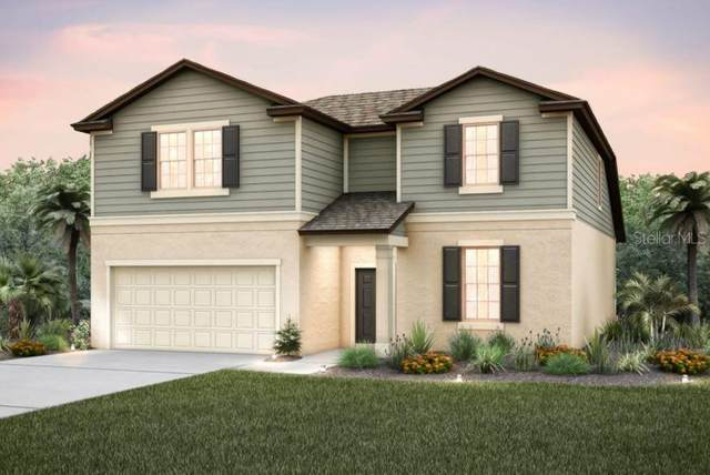 13813 Tonya Anne Drive, Riverview, FL 33579 (MLS #T3267063) :: The Nathan Bangs Group