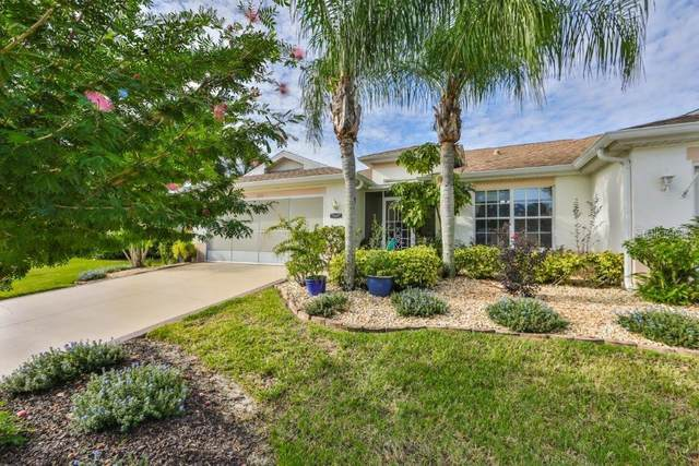 1125 New Winsor Loop, Sun City Center, FL 33573 (MLS #T3267077) :: Carmena and Associates Realty Group