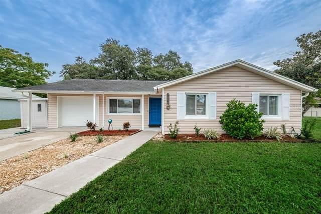 1141 Elmendorf Trace, Tarpon Springs, FL 34689 (MLS #T3267091) :: Pepine Realty