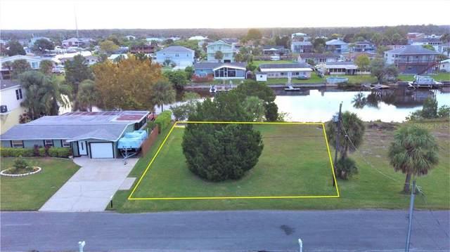 Bellaire Drive, Hernando Beach, FL 34607 (MLS #T3267111) :: Bustamante Real Estate