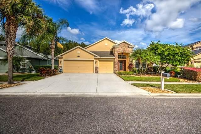 16301 Nikki Lane, Odessa, FL 33556 (MLS #T3267120) :: The Nathan Bangs Group