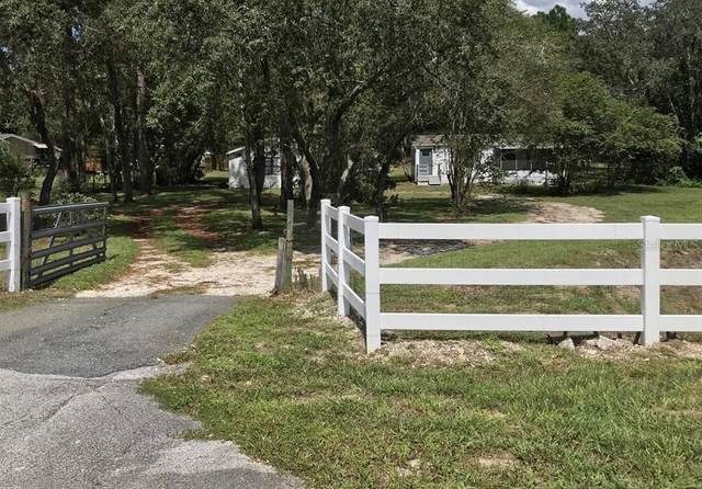 17511 Carthage Avenue, Spring Hill, FL 34610 (MLS #T3267197) :: Lockhart & Walseth Team, Realtors