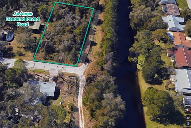 Elkton Avenue, Hudson, FL 34667 (MLS #T3267212) :: Bustamante Real Estate