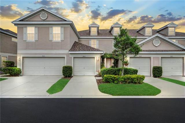10023 Tranquility Way, Tampa, FL 33625 (MLS #T3267225) :: Young Real Estate