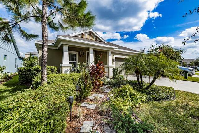 6421 Tideline Drive, Apollo Beach, FL 33572 (MLS #T3267227) :: Premium Properties Real Estate Services