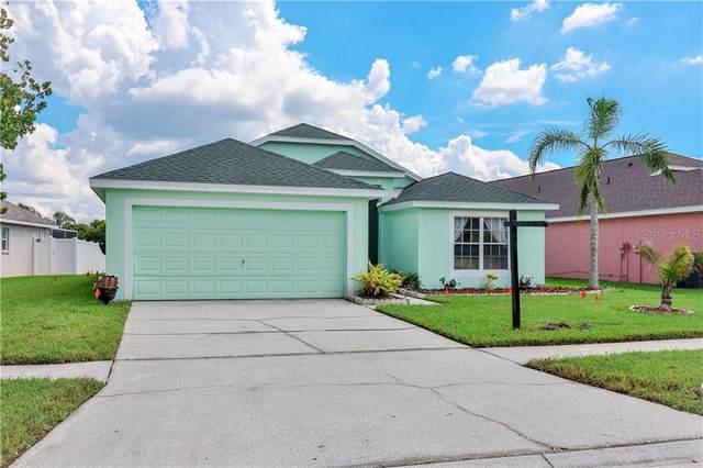 1131 Vinetree Drive, Brandon, FL 33510 (MLS #T3267245) :: Dalton Wade Real Estate Group