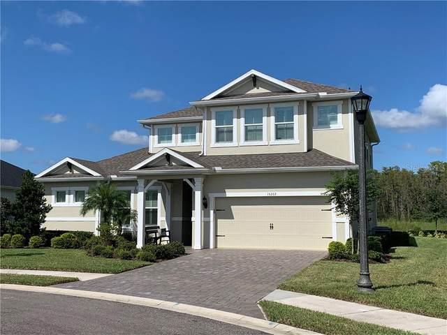 15269 Sevares Court, Odessa, FL 33556 (MLS #T3267248) :: Griffin Group