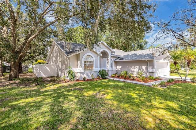 1207 Kayak Cove, Lutz, FL 33559 (MLS #T3267257) :: Rabell Realty Group