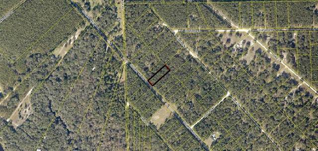 Highway 349 Highway, O Brien, FL 32071 (MLS #T3267269) :: Bob Paulson with Vylla Home