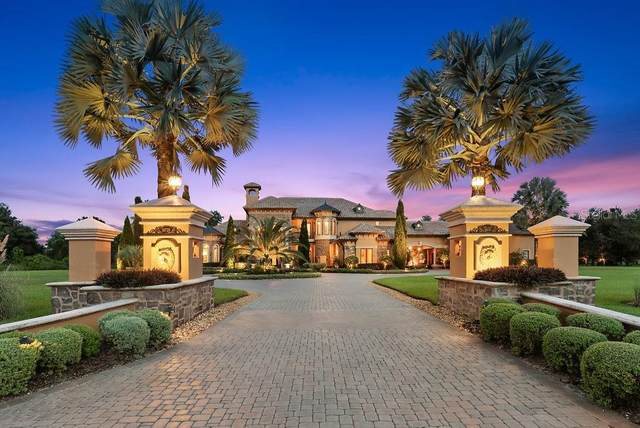 18725 Hillstone Drive, Odessa, FL 33556 (MLS #T3267288) :: Griffin Group