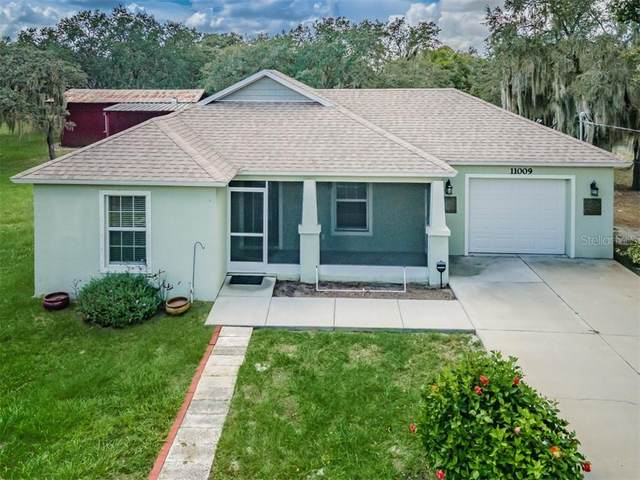 11009 Fresno Lane, Riverview, FL 33579 (MLS #T3267308) :: Griffin Group