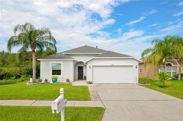 10317 Beneva Drive, Tampa, FL 33647 (MLS #T3267341) :: Premier Home Experts