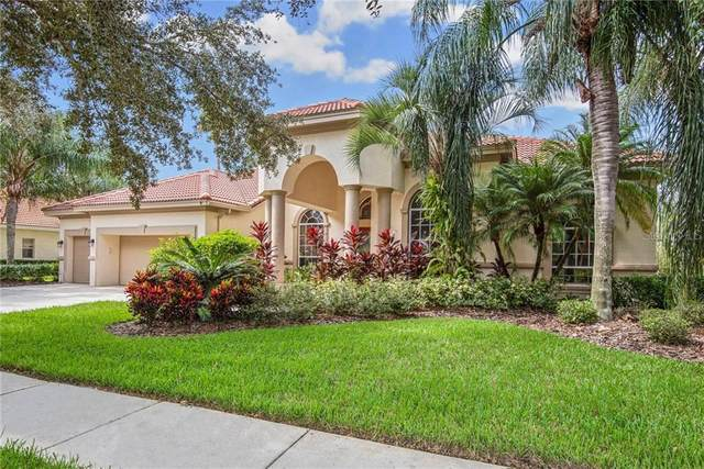 17815 Arbor Greene Drive, Tampa, FL 33647 (MLS #T3267354) :: Rabell Realty Group