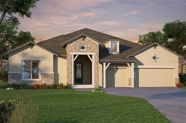 4299 Epic Cove, Land O Lakes, FL 34638 (MLS #T3267389) :: Premier Home Experts