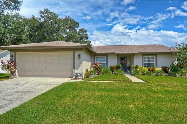 536 Oak Creek Drive, Brandon, FL 33511 (MLS #T3267415) :: Dalton Wade Real Estate Group