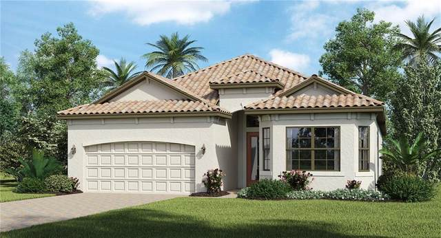 25147 Spartina Drive, Venice, FL 34293 (MLS #T3267433) :: The Light Team