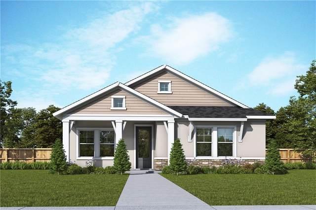 3721 Persimmon Park Drive, Wesley Chapel, FL 33543 (MLS #T3267443) :: Griffin Group