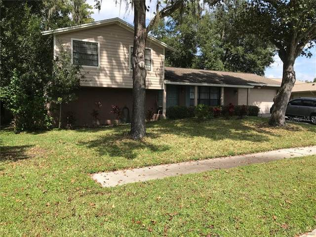 16720 Norwood Drive, Tampa, FL 33624 (MLS #T3267458) :: Griffin Group