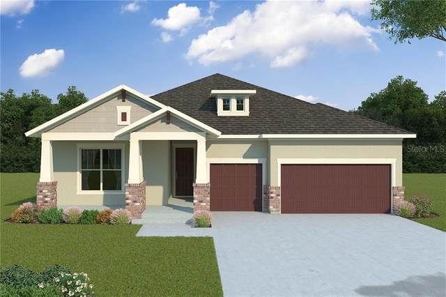 16334 Frehley Run, Land O Lakes, FL 34638 (MLS #T3267459) :: Griffin Group