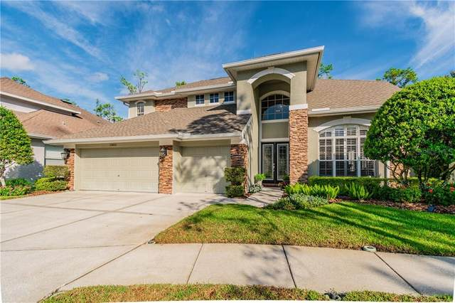10403 Greenmont Drive, Tampa, FL 33626 (MLS #T3267461) :: Griffin Group