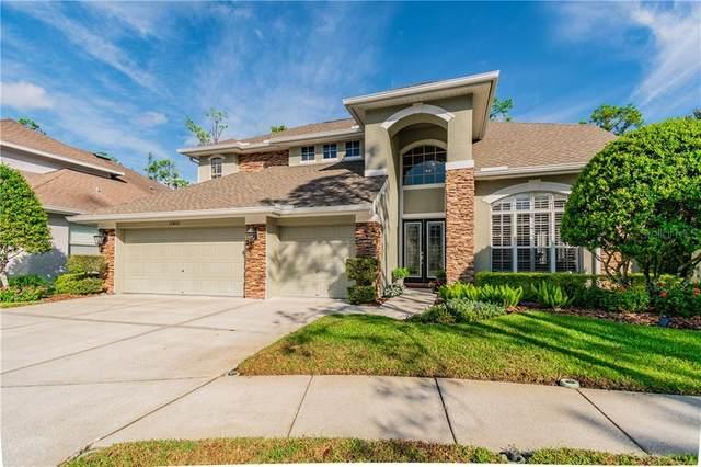 10403 Greenmont Drive, Tampa, FL 33626 (MLS #T3267461) :: Team Bohannon Keller Williams, Tampa Properties