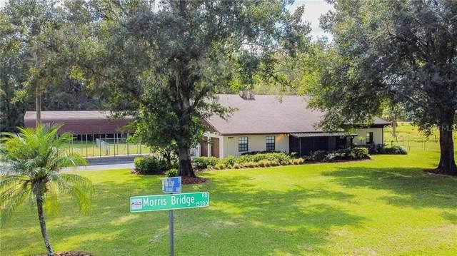 15299 Morris Bridge Road, Thonotosassa, FL 33592 (MLS #T3267473) :: CENTURY 21 OneBlue