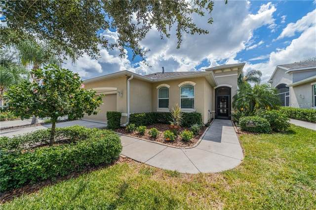 2246 Oakley Green Drive, Sun City Center, FL 33573 (MLS #T3267542) :: Team Bohannon Keller Williams, Tampa Properties