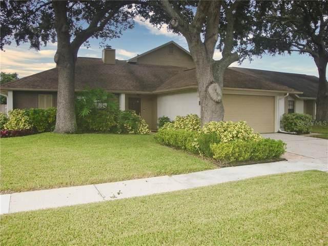 1405 Star Jasmine Lane, Brandon, FL 33511 (MLS #T3267557) :: Dalton Wade Real Estate Group