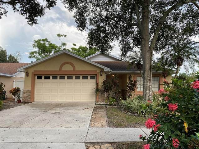 6016 Crickethollow Drive, Riverview, FL 33578 (MLS #T3267604) :: Gate Arty & the Group - Keller Williams Realty Smart