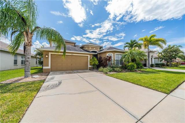 1820 Raven Glen Drive, Ruskin, FL 33570 (MLS #T3267612) :: Griffin Group