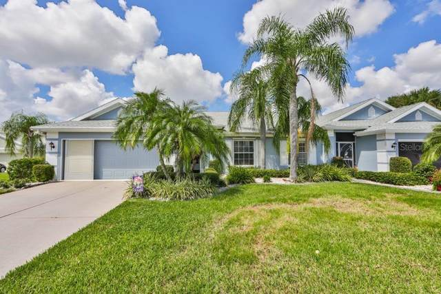 1003 Otter Mill Way, Sun City Center, FL 33573 (MLS #T3267626) :: Team Bohannon Keller Williams, Tampa Properties