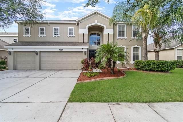 11440 Dutch Iris Drive, Riverview, FL 33578 (MLS #T3267678) :: Dalton Wade Real Estate Group