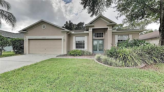 12922 Lake Ventana Drive, Tampa, FL 33625 (MLS #T3267725) :: BuySellLiveFlorida.com