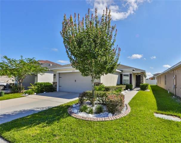 10732 Southern Forest Drive, Riverview, FL 33578 (MLS #T3267730) :: Team Bohannon Keller Williams, Tampa Properties