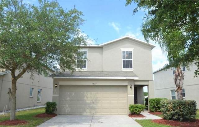 7827 Carriage Pointe Drive, Gibsonton, FL 33534 (MLS #T3267780) :: Lucido Global