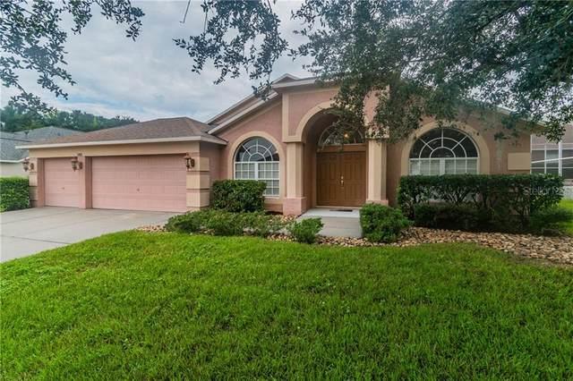 1305 Big Creek Drive, Wesley Chapel, FL 33544 (MLS #T3267797) :: Gate Arty & the Group - Keller Williams Realty Smart