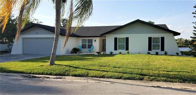 5717 Seabreeze Drive, Port Richey, FL 34668 (MLS #T3267800) :: Team Borham at Keller Williams Realty
