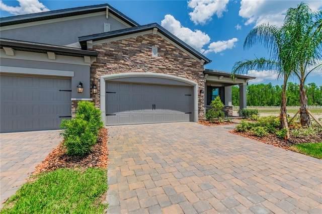 19356 Hawk Valley Drive, Tampa, FL 33647 (MLS #T3267822) :: Dalton Wade Real Estate Group