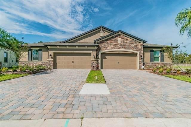 19358 Hawk Valley Drive, Tampa, FL 33647 (MLS #T3267825) :: Dalton Wade Real Estate Group