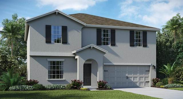 1319 Lassen Street, Davenport, FL 33837 (MLS #T3267845) :: Griffin Group