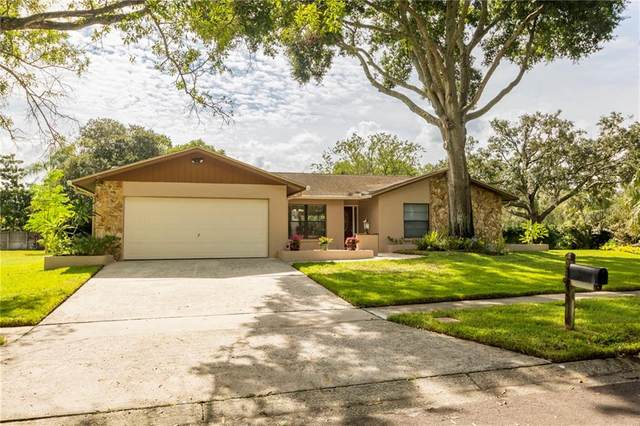 14042 Wolcott Drive, Tampa, FL 33624 (MLS #T3267867) :: The Paxton Group