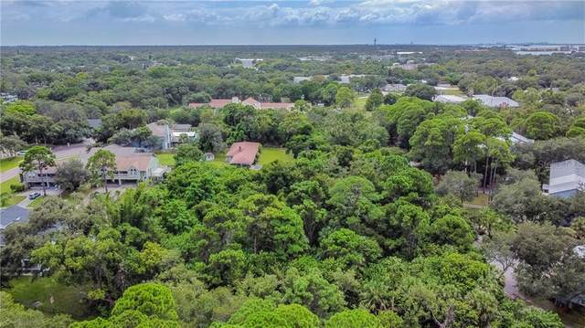 600 Pennsylvania, Palm Harbor, FL 34683 (MLS #T3267871) :: BuySellLiveFlorida.com
