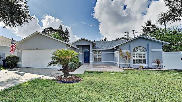 3101 Featherwood Court, Clearwater, FL 33759 (MLS #T3267880) :: Dalton Wade Real Estate Group