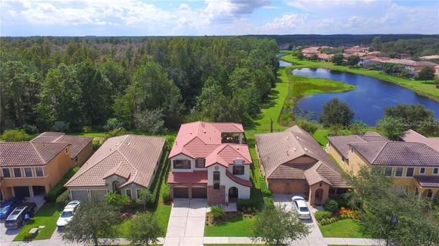 8235 Dunham Station Drive, Tampa, FL 33647 (MLS #T3267905) :: Dalton Wade Real Estate Group