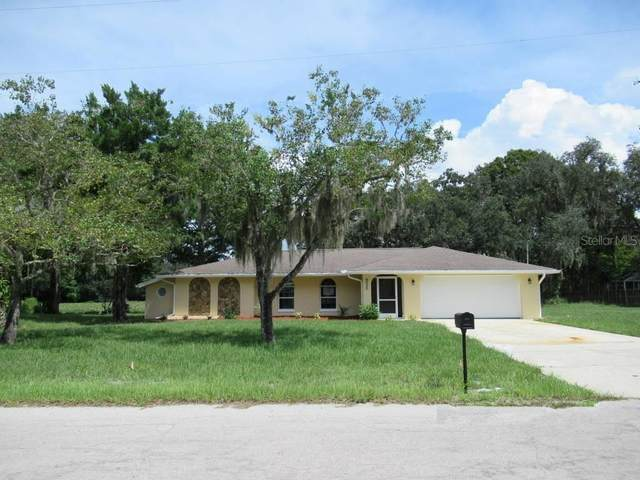 9030 Sharon Drive, New Port Richey, FL 34654 (MLS #T3267952) :: EXIT King Realty