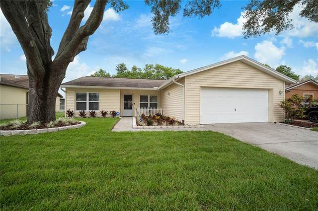 815 Settlers Road, Tampa, FL 33613 (MLS #T3267958) :: Burwell Real Estate